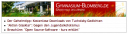Screenshot unseres Newstickers