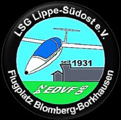 LSG-CI-Logo-001-01 Standard